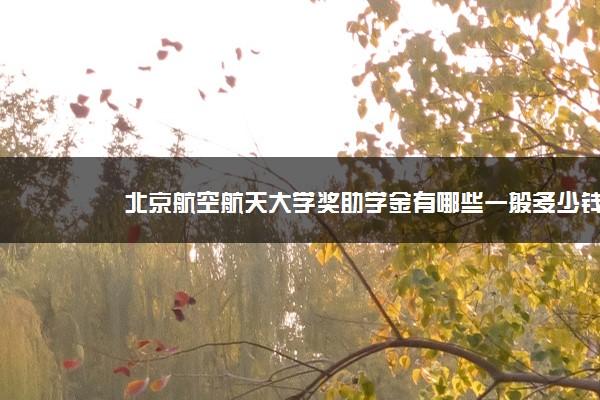 北京航空航天大学奖助学金有哪些一般多少钱 怎么申请评定