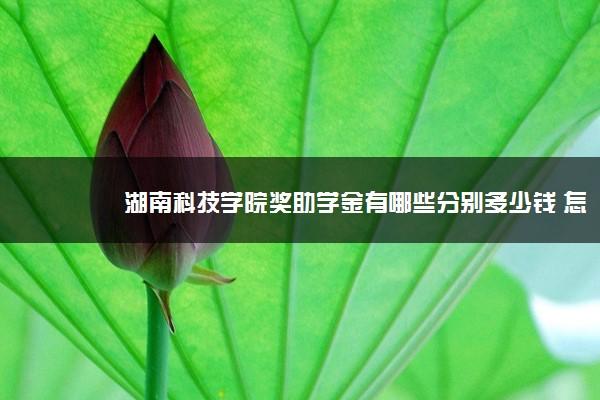 湖南科技学院奖助学金有哪些分别多少钱 怎么申请评定
