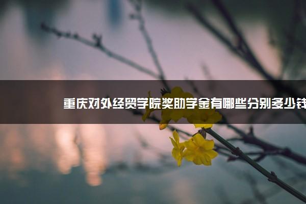 重庆对外经贸学院奖助学金有哪些分别多少钱 怎么申请评定
