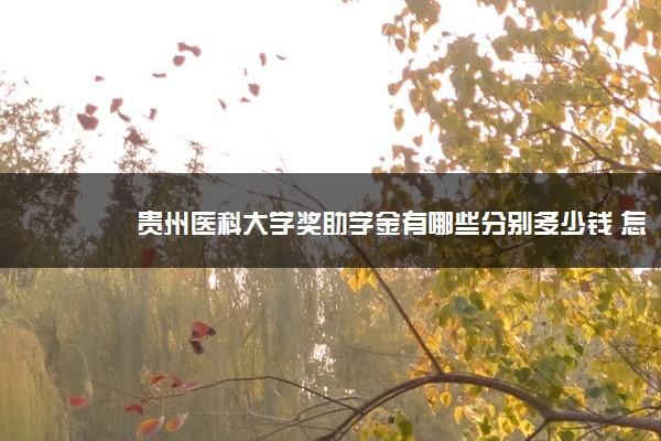 贵州医科大学奖助学金有哪些分别多少钱 怎么申请评定