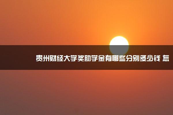 贵州财经大学奖助学金有哪些分别多少钱 怎么申请评定