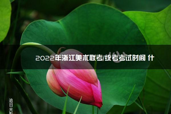 2022年浙江美术联考/统考考试时间 什么时候考试